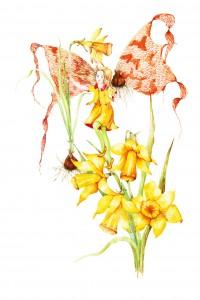 Pamela Meacher, Watercolour